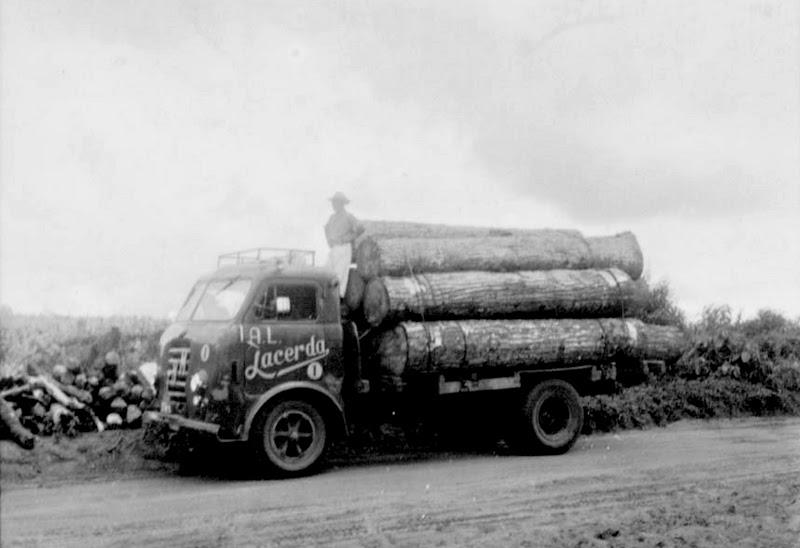 caminhão madeira lacerda