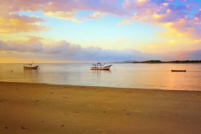pr ilha do superagui guaraqueçaba sem identificação do fotógrafo